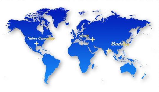 global_map_8