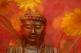 buddha90210